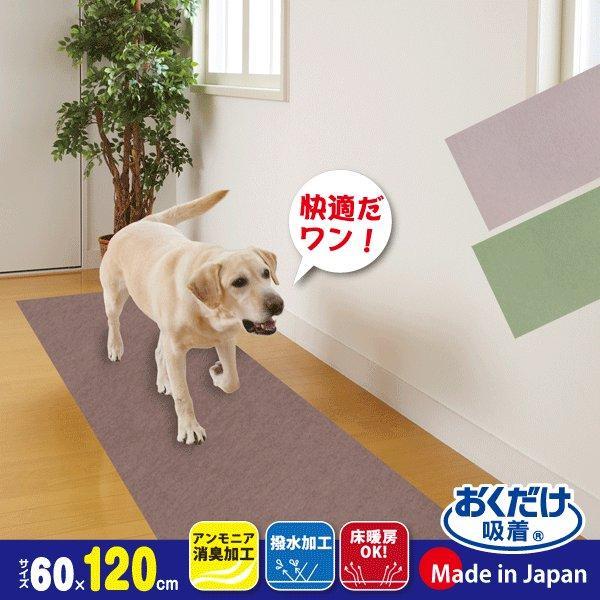 廊下敷きマット カーペット ずれない 滑らない 犬 ペット 吸着 洗える 消臭保護 60×120cm おくだけ吸着 サンコー|sanko-online