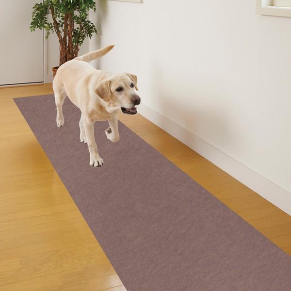 廊下敷きマット カーペット ずれない 滑らない 犬 ペット 吸着 洗える 消臭保護 60×120cm おくだけ吸着 サンコー|sanko-online|06