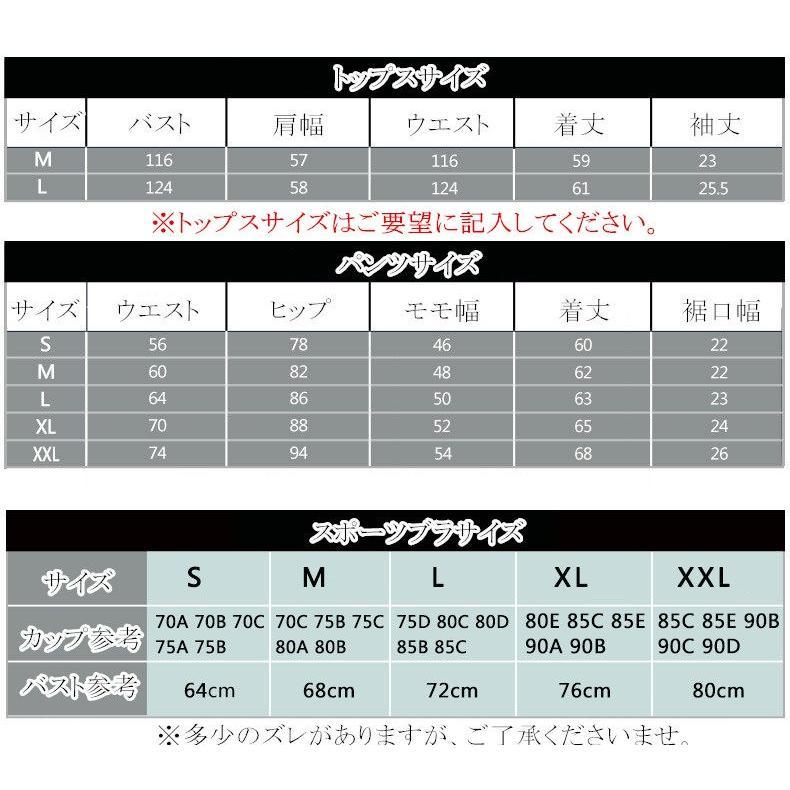 スポーツウェア 3点セット 半袖 レギンス トップス セットウェア   スボーツブラ 上下ランニング スポーツ フィットネス レディース 大きいサイズFJLE-18|sanpi|11