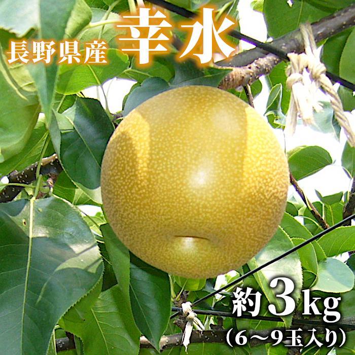 梨 幸水 約3kg(6〜9玉入り) 長野県産 お取り寄せ 産地直送:c23