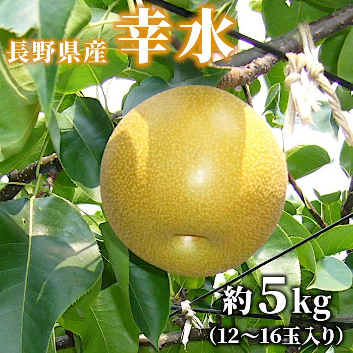 梨 幸水 約5kg(12〜16玉入り) 長野県産 お取り寄せ 産地直送:c24