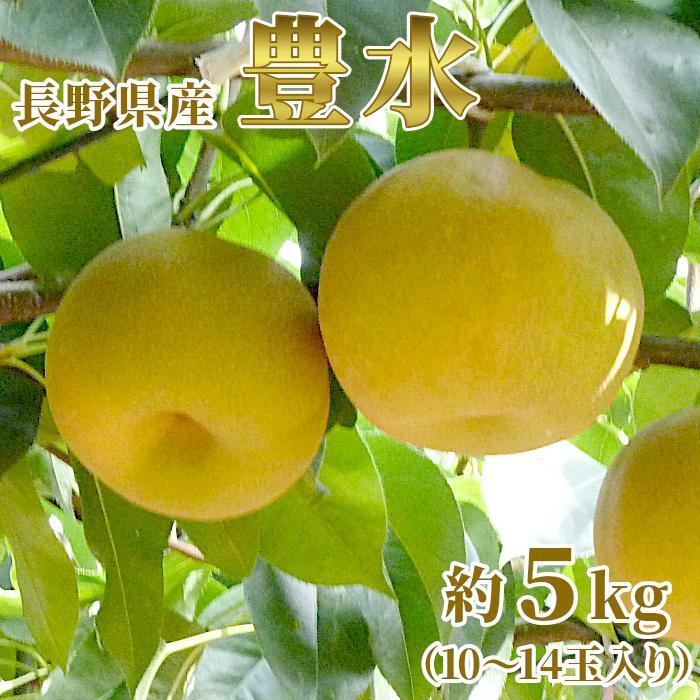梨 豊水 5kg(10〜14玉) 長野県産 お取り寄せ 産地直送:c26