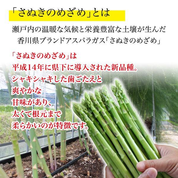 香川県 産地直送 さぬきのめざめ 秀品 約700g 送料無料 ブランドアスパラ santa-gift 03