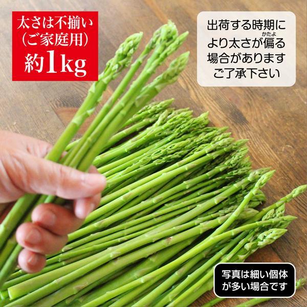 特価 約1kg 太さ不揃い 香川県 産地直送 さぬきのめざめ 送料無料 ブランドアスパラ santa-gift 02