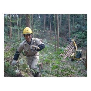 林業集材用繊維ロープ 東京製綱繊維ロープ エースライン 12mm 70m 林業 集材 国内メーカー製 ロープ 安全 軽い 柔らかい 滑りがいい 簡単 sanyosyoji 04