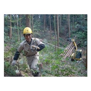林業集材用繊維ロープ 東京製綱繊維ロープ エースライン 12mm 100m 林業 集材 国内メーカー製 ロープ 安全 軽い 柔らかい 滑りがいい 簡単|sanyosyoji|04