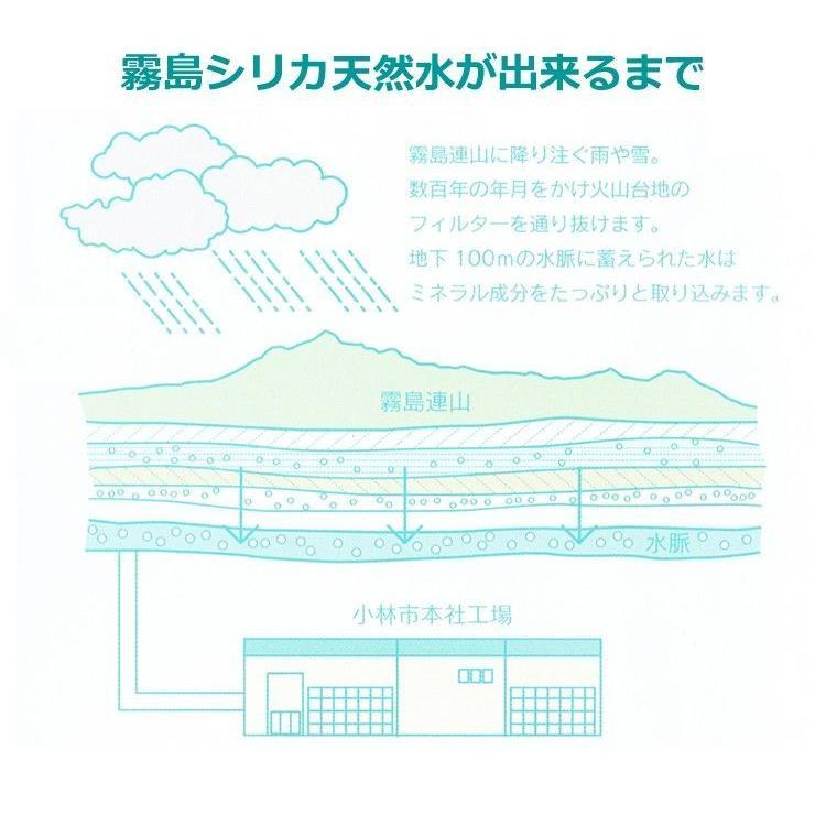 霧島シリカ天然水 500ml×24本(商品名、パッケージ変更しました) sanyu-chokuhan 02