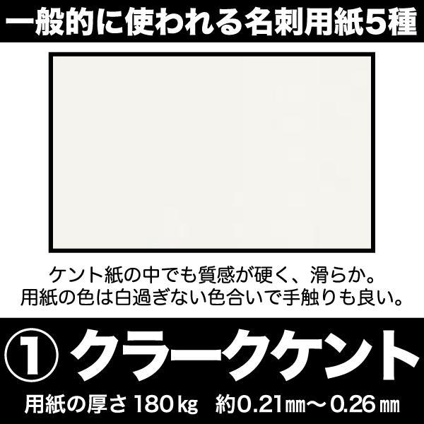 名刺 簡単注文 お値段以上 激安 仕事用 プライベート用 ペット用名刺 sanyu-kousan 08