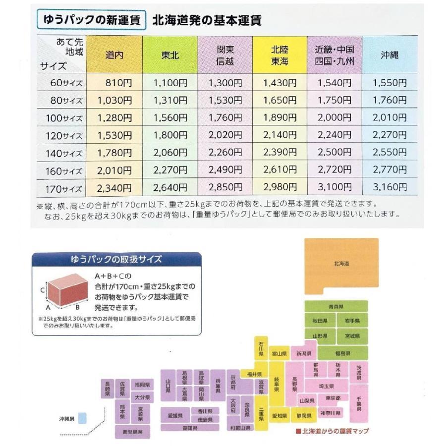 強アルカリ性電解水   10L コロナ対策・ウイルス除菌・消臭・洗浄水|sapporo-kuyou|04