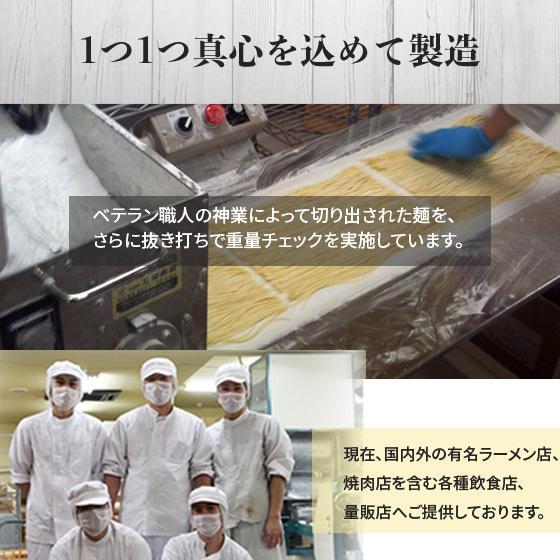 25%OFF ラーメン お取り寄せ 北海道 生麺 味噌 塩 醤油 海老味噌 スープカレー 送料無料 札幌工場直送生ラーメン4食+1食おまけセット satsumen 14