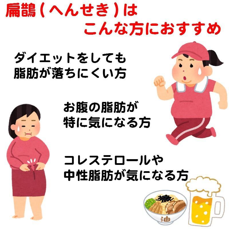 ダイエット やせる 漢方 肥満 脂肪過多症 扁鵲(へんせき)210包 第2類医薬品 建林松鶴堂|satuma|09