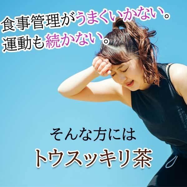 ダイエットティー 糖質制限 コタラヒム トウスッキリ茶 30包 カロリーカット〔サツマ薬局〕|satuma|02