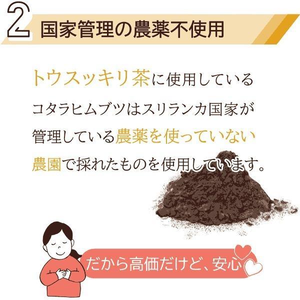 ダイエットティー 糖質制限 コタラヒム トウスッキリ茶 30包 カロリーカット〔サツマ薬局〕|satuma|07