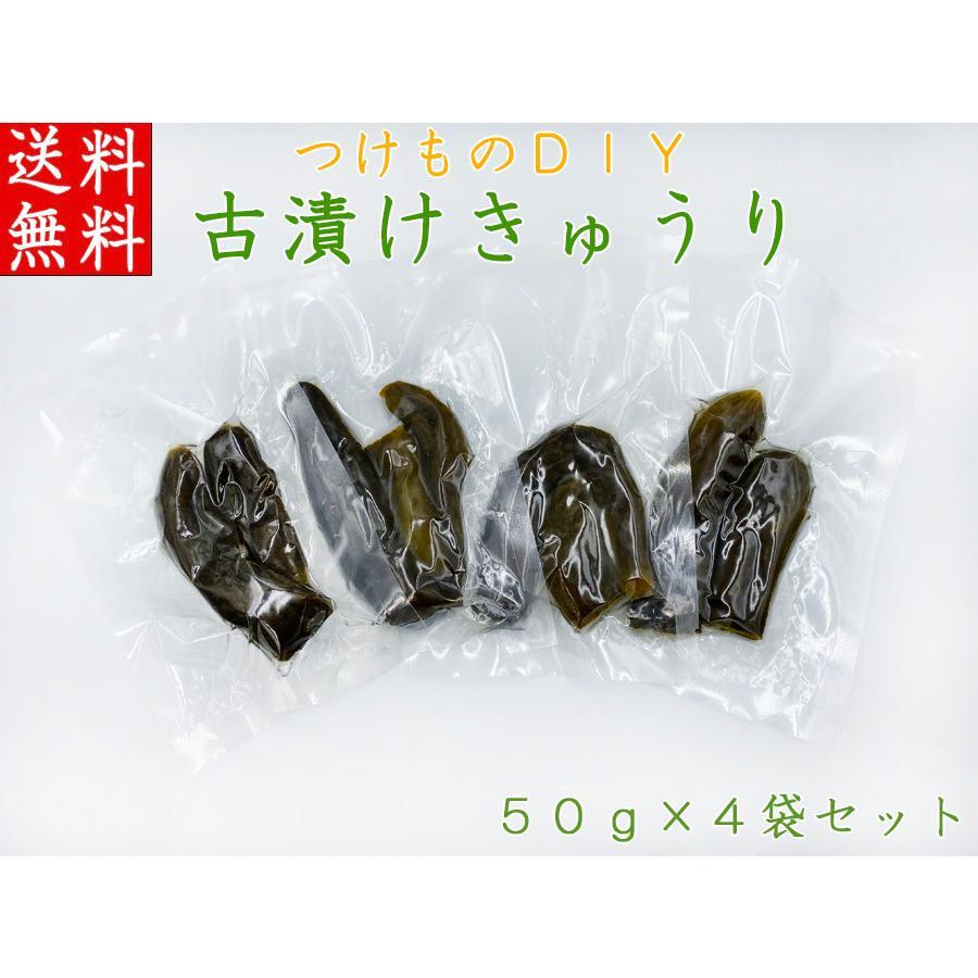 つけものDIY 古漬けきゅうり 50g×4袋セット 自宅でできる漬物づくり体験 国産 塩漬け 胡瓜 発酵食品 乳酸菌 ステイホーム 送料無料 sawatsuke