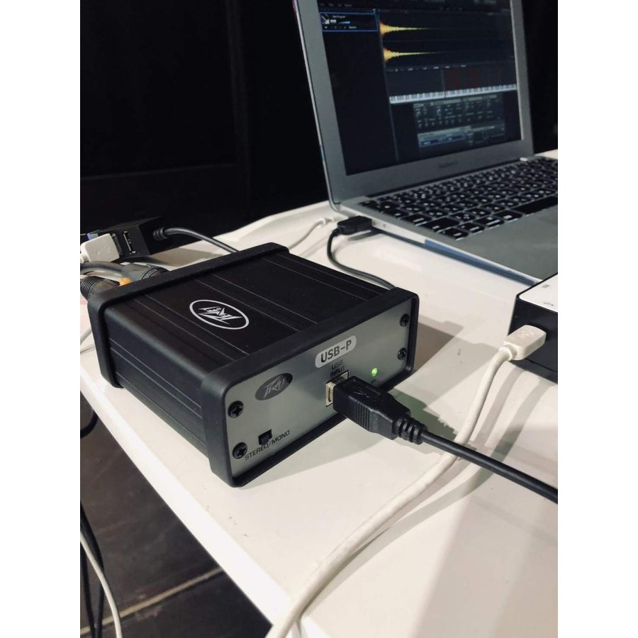 PEAVEY ステレオ USB DI ボックス USB-P USB Playback DAC国内正規品|sazanamisp|02