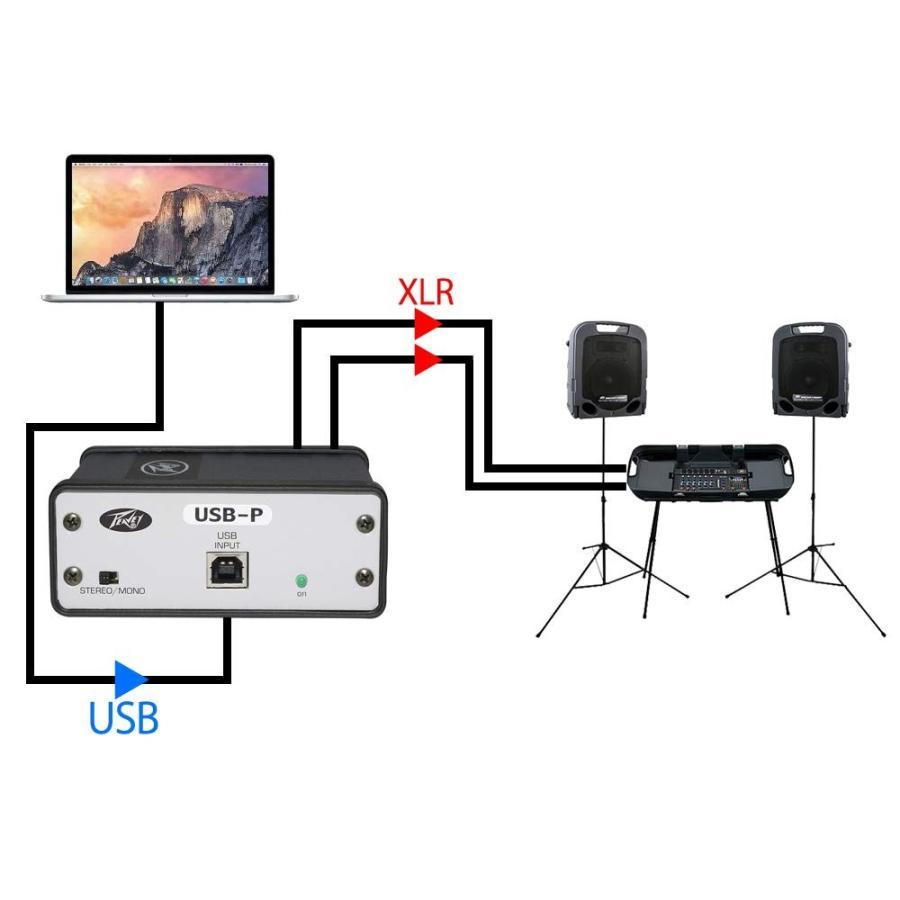 PEAVEY ステレオ USB DI ボックス USB-P USB Playback DAC国内正規品|sazanamisp|05
