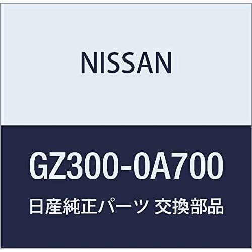 NISSAN(ニッサン) 日産純正部品 ワーニングランプ GZ300-0A700