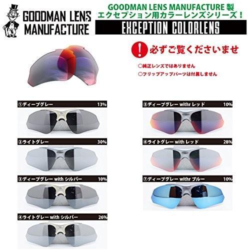 ディープグレーRUDY PROJECT(ルディープロジェクト) EXCEPTION(エクセプション)用交換レンズ カラーレンズ (サングラス