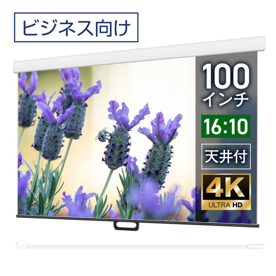 プロジェクタースクリーン スプリングスクリーン ケースあり 100インチ(16:10) マスクフリー WCS2154FEH|screen-theaterhouse