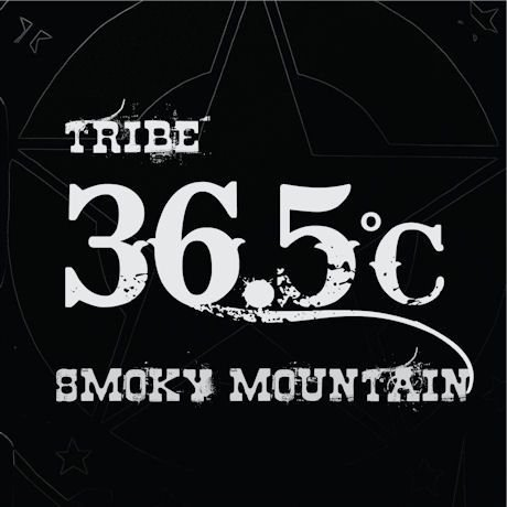 チェ・ミンス 1集 36.5C TRIBE ROCKSAN CD 韓国盤|scriptv