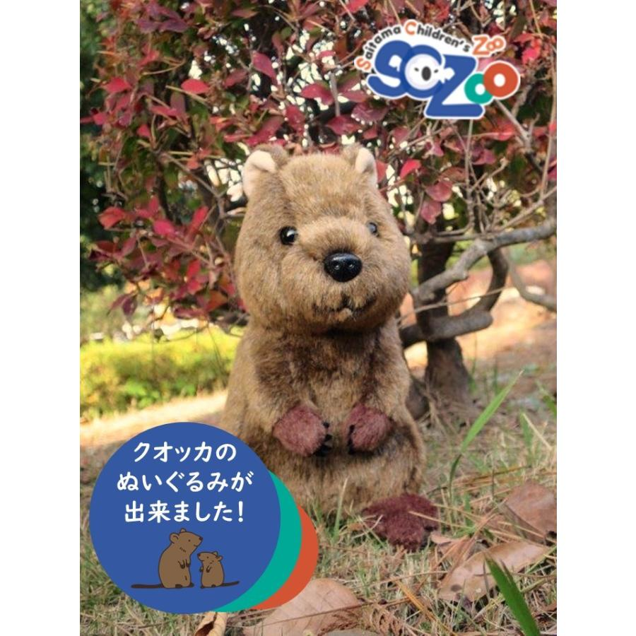 クオッカぬいぐるみ オンライン限定商品 25%OFF 埼玉県こども動物自然公園オリジナル