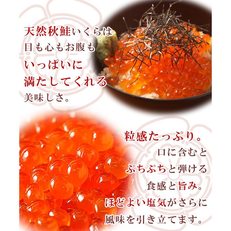 いくら 500g 鮭 北海道産 醤油漬け|seafoodhonpo88|02