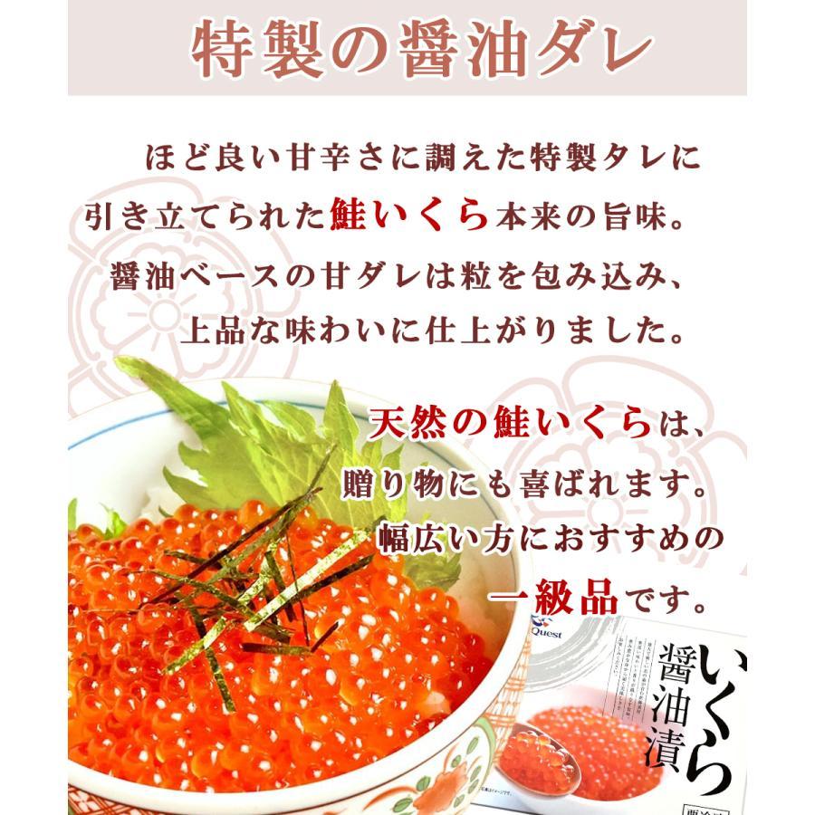 いくら 500g 鮭 北海道産 醤油漬け|seafoodhonpo88|03