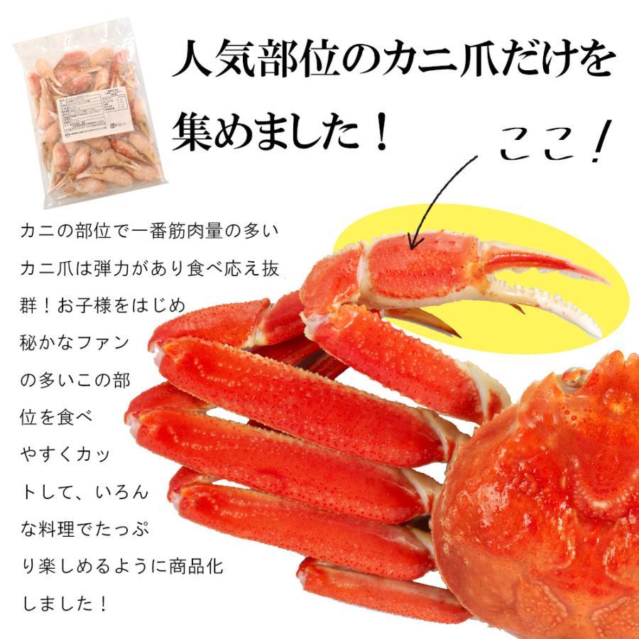 ボイルずわい爪500g 爪 ポーション ズワイガニ 蟹|seafoodhonpo88|03