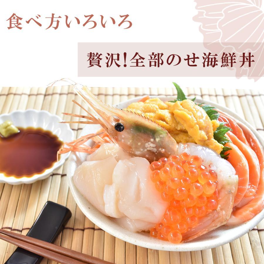 お刺身用 ボタンエビ 10尾 bbq 海鮮 海老 えび シーフード 生食 海鮮丼|seafoodhonpo88|04