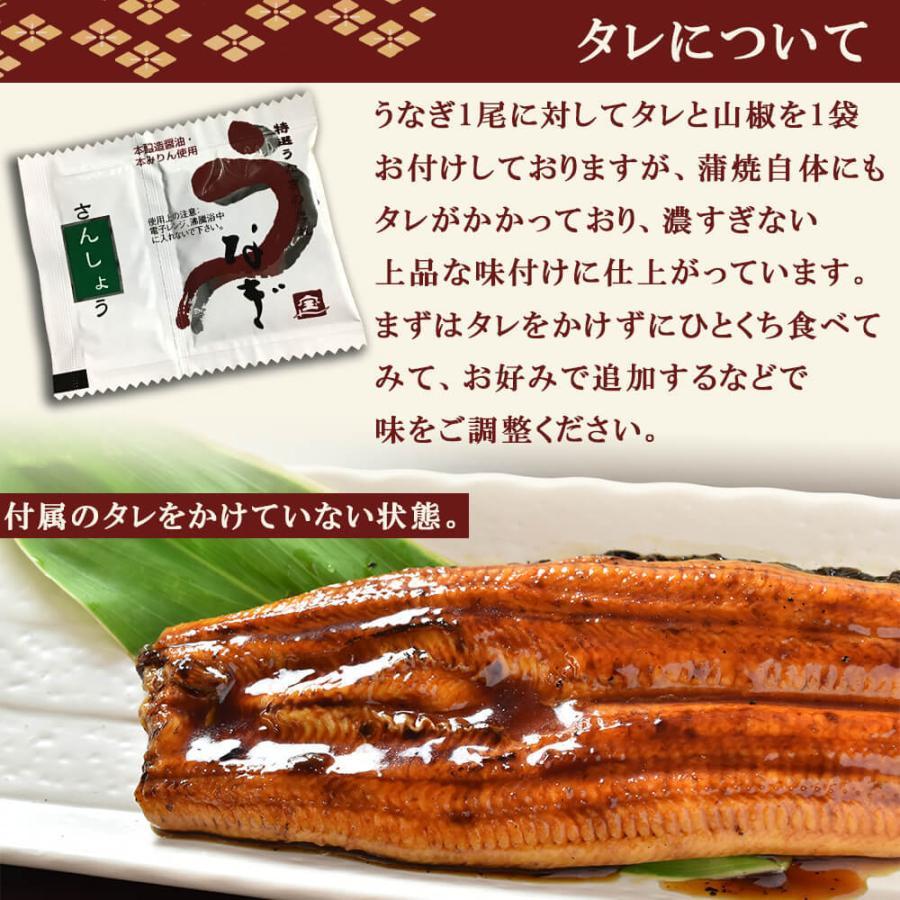父の日 プレゼント 2021 鹿児島 うなぎ 蒲焼き 2本 特大 ギフト|seafoodhonpo88|09