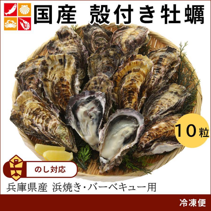 牡蠣 殻付き 兵庫県産 10個  父の日 プレゼント 60代 70代 80代|seafoodhonpo88