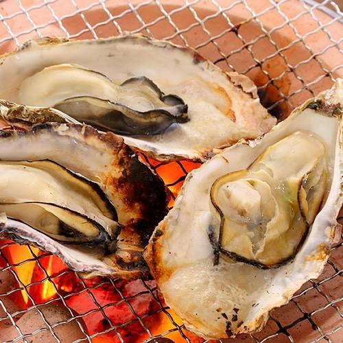 牡蠣 殻付き 兵庫県産 10個  父の日 プレゼント 60代 70代 80代|seafoodhonpo88|02