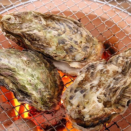牡蠣 殻付き 兵庫県産 10個  父の日 プレゼント 60代 70代 80代|seafoodhonpo88|03