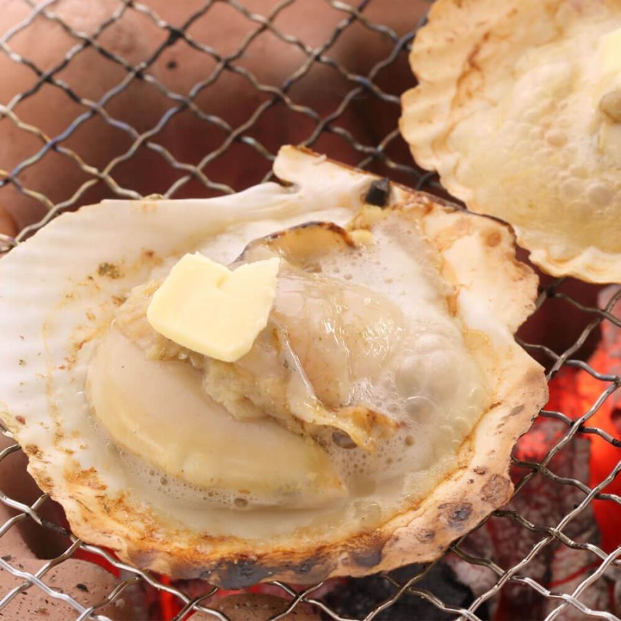 ホタテ 貝 殻付き 北海道産 30枚 セット seafoodhonpo88 08