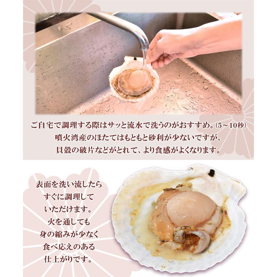 ホタテ 貝 殻付き 北海道産 30枚 セット seafoodhonpo88 02