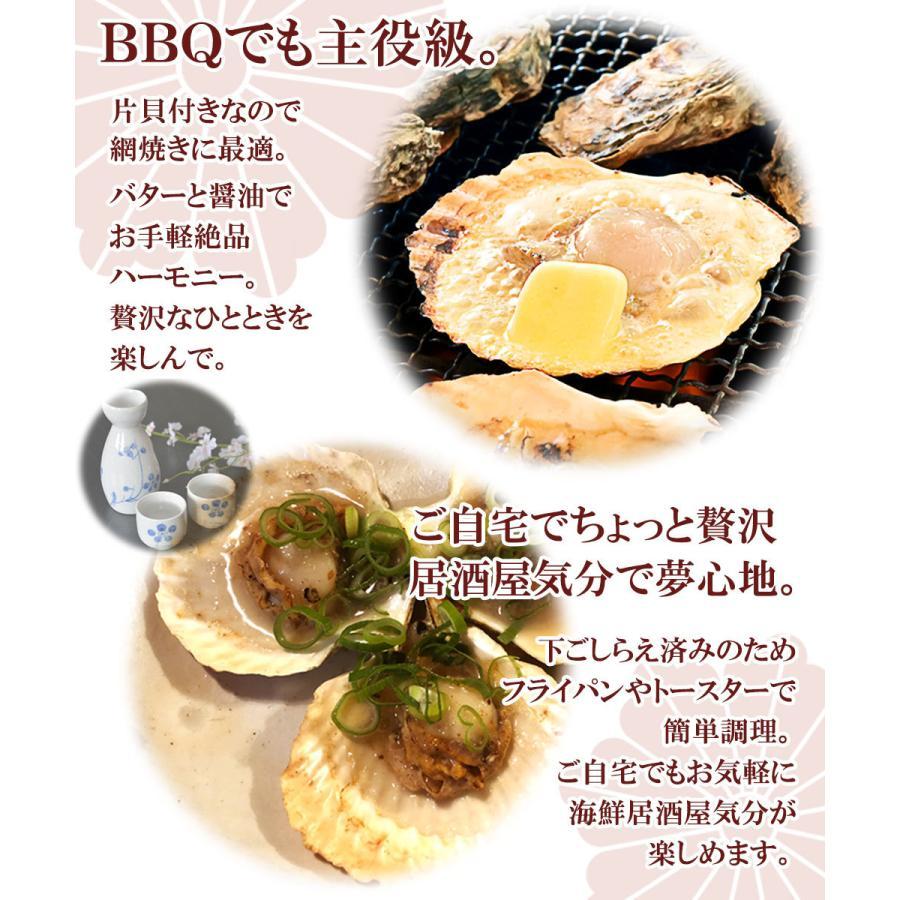 ホタテ 貝 殻付き 北海道産 30枚 セット seafoodhonpo88 03