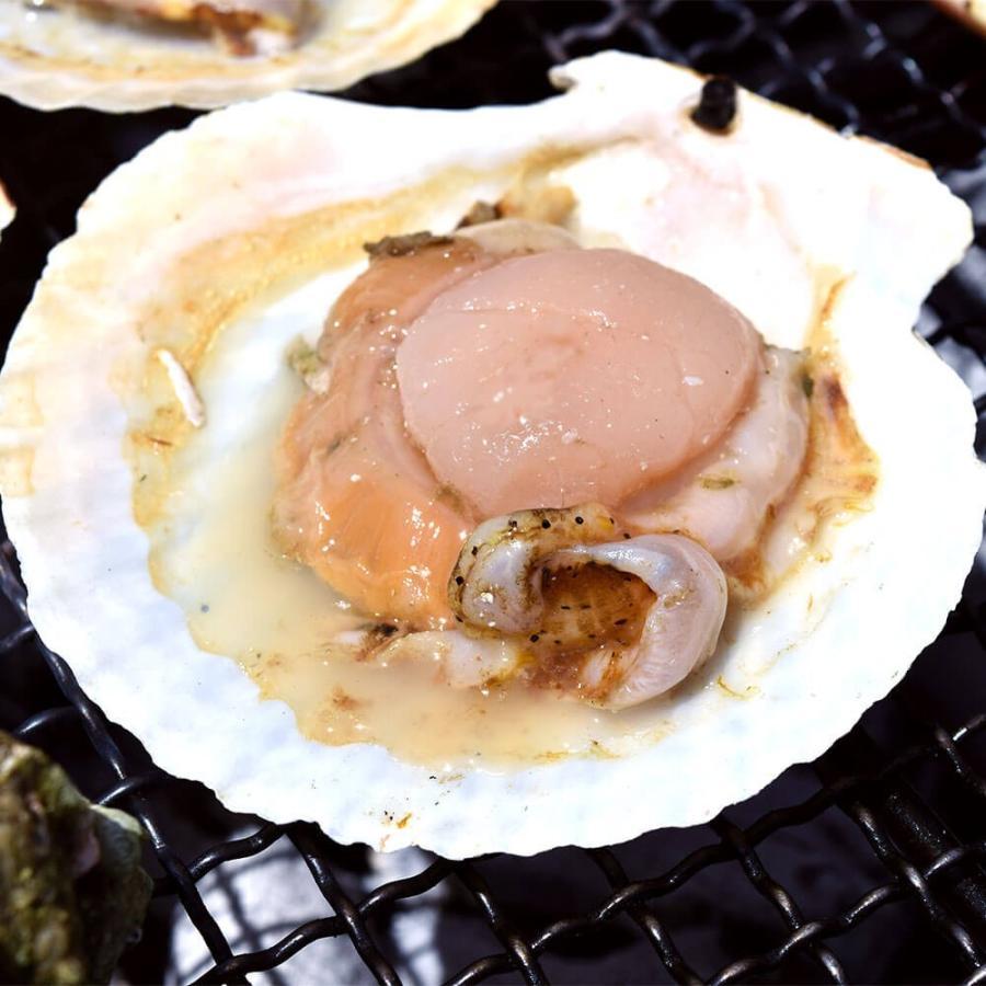 ホタテ 貝 殻付き 北海道産 30枚 セット seafoodhonpo88 07