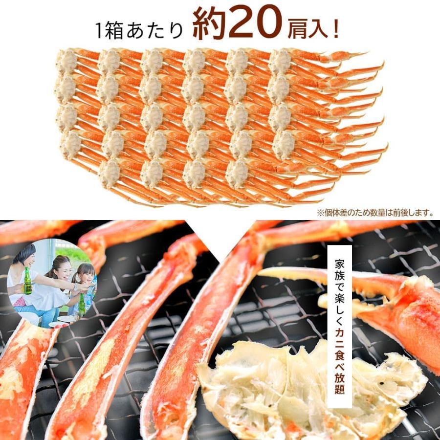 カニ ズワイガニ 足 5kg 業務用|seafoodhonpo88|04