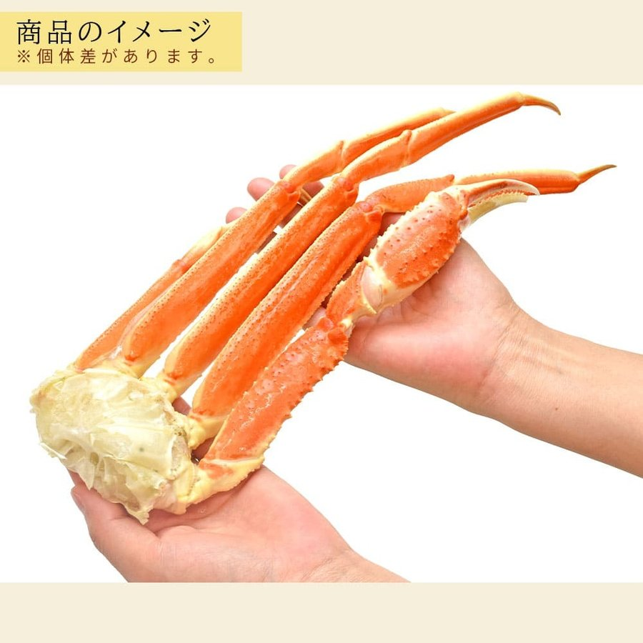 カニ ズワイガニ 足 5kg 業務用|seafoodhonpo88|05