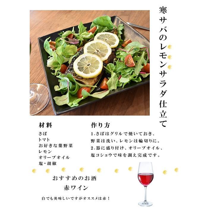 干物 セット 甲印小西商店 3種 詰め合わせ seafoodhonpo88 10