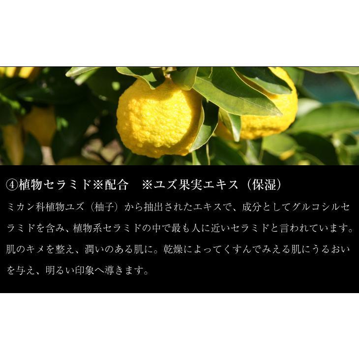 ララクリスティー LARA Christie ハンドクリーム ヴィーナスローザ Venus Rosa Hand Cream 45g lcs91-0001 敬老の日|sears-collection|11