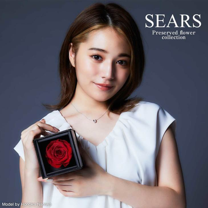 ネックレス レディース 一粒CZ  ダイヤモンドローズ プリザーブドフラワー 薔薇 バラ 1輪 誕生日 Sears (シアーズ)|sears-collection|02