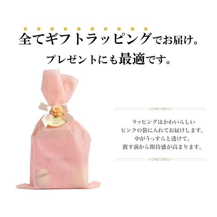 ブルガリ BVLGARI フレグランス 香水 オムニア アメジスト 5ml テディベア ギフト セット プレゼント シアーズ Sears 並行輸入品 sears-collection 10