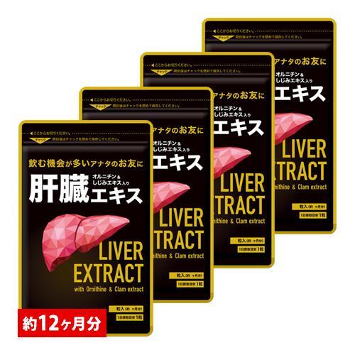 サプリ サプリメント 未使用品 注目ブランド 肝臓エキス BIGサイズ約1年分 送料無料