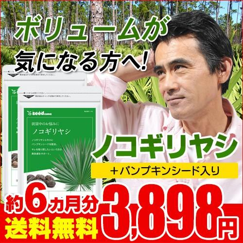 サプリ 高品質 サプリメント ノコギリヤシ 数量限定 約6ヵ月分 送料無料 お徳用半年分サプリSALE ダイエット