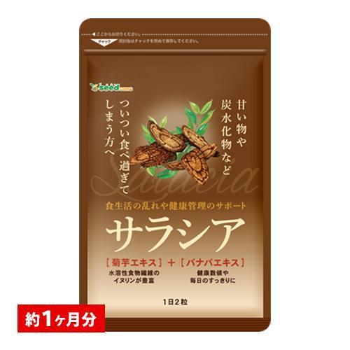 クーポンで198円 サプリ サプリメント サラシア 約1ヵ月分 送料無料 ダイエット サラシア茶 炭水化物|シードコムスPayPayモール店