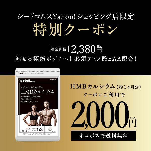 1日3000mgのHMBを高配合 HMBカルシウム+必須アミノ酸EAA配合 約1ヵ月分 送料無料 筋トレ トレーニング HMB 在庫処分 hmb 爆安プライス スポーツ ダイエット