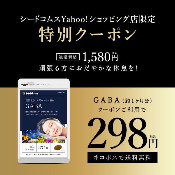 サプリ サプリメントGABA 直営店 約1ヵ月分 ギャバ 在庫一掃売り切りセール