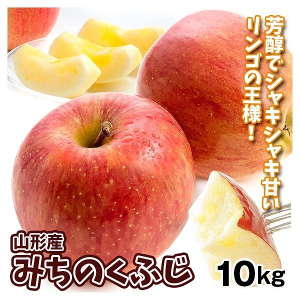 りんご 山形産 みちのくふじ 10kg  国華園 りんご リンゴ サンふじ|seikaokoku