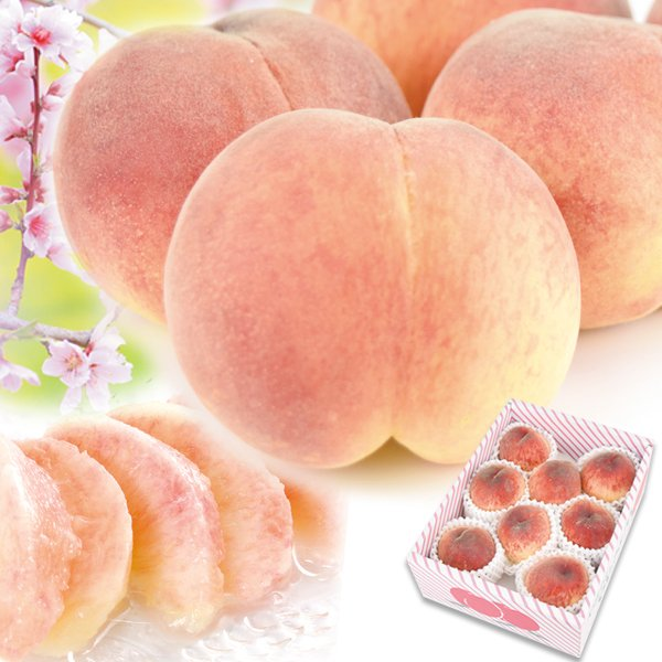 山梨産 笛吹の桃 1.5kg 品種おまかせ もも ピーチ フルーツ seikaokoku 02